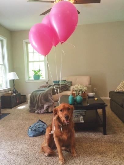 Annie rocking Charlotte's pink balloons!